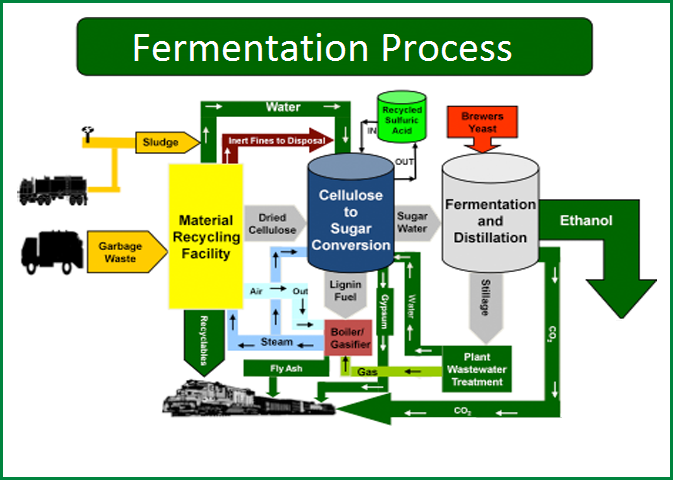 Fellowship of National Sugar Institute in Fermentation Technology